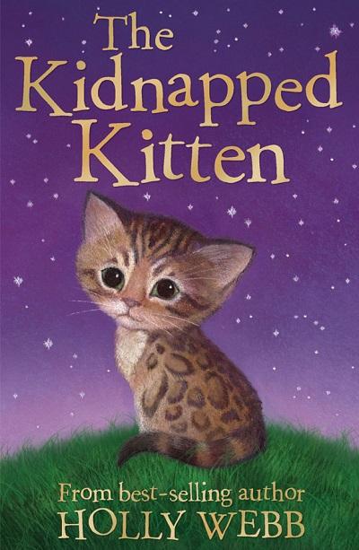 Jacket for 'The Kidnapped Kitten'